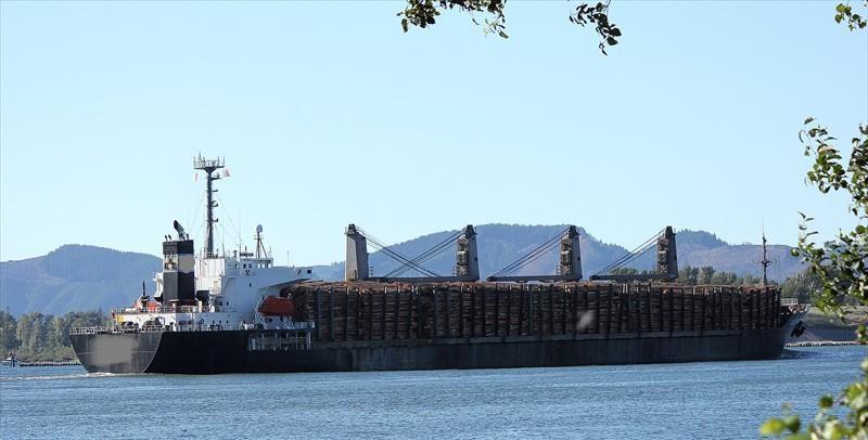 177m Bulk Carrier Handymax - Log Carrier - DWT 31764 For Sale