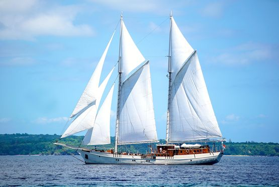 46m Double Masted Schooner 2010 For Sale
