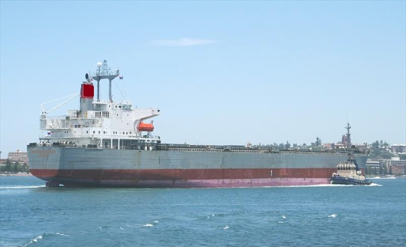 230m Single Deck Gearless Bulk Carrier - DWT 77283 For Sale