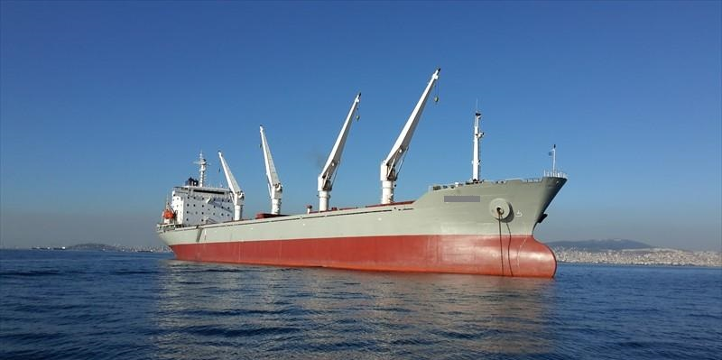 186m Bulk Carrier Handysize IACS Class - DWT 29300 For Sale