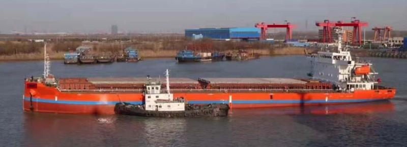 110m Bulk Carrier Gearless New Built  - DWT 9800 For Sale