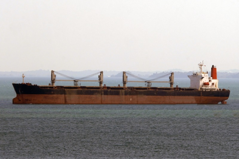 224m Geared Panamax Bulk Carrier 71332 DWT - 1995 For Sale