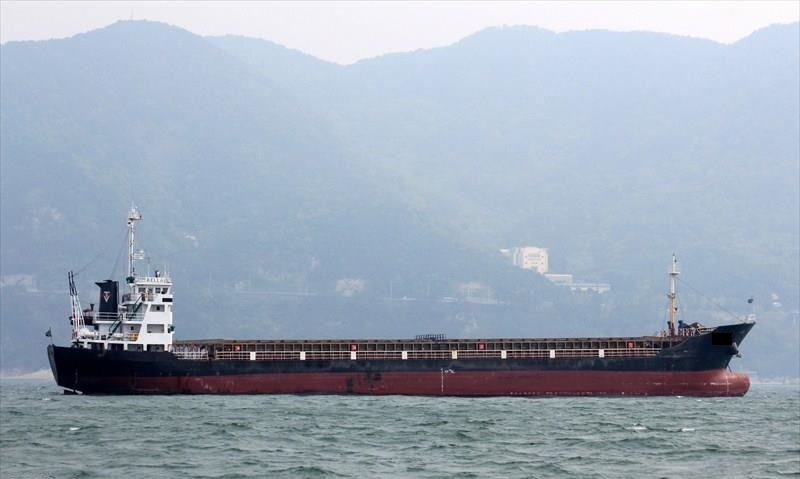 86m Bulk Carrier Vessel Gearless Single Decker - DWT 3120 For Sale