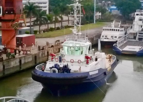 30m Handy Size ASD Tug Boat 2018 - Accommodates 12 For Sale