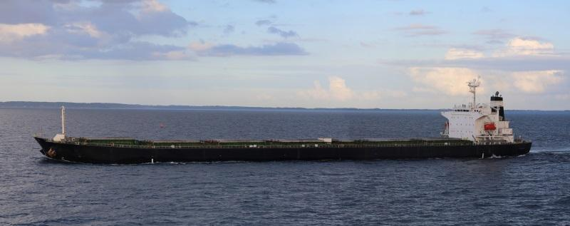 224m Panamax Class General Bulk Carrier 2007 - DWT 75395 For Sale