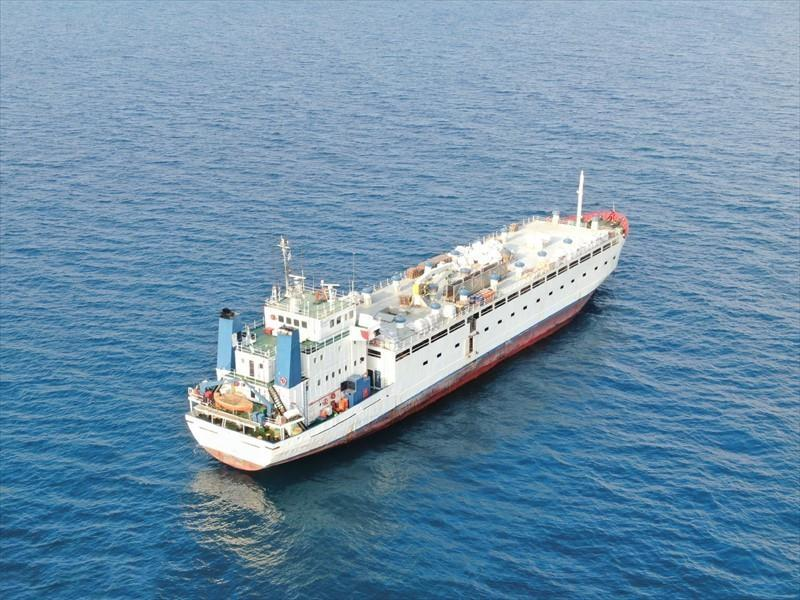 84m Livestock Carrier 1982 - 2200 Bulls - 8800 Lambs - DWT 2087 For Sale