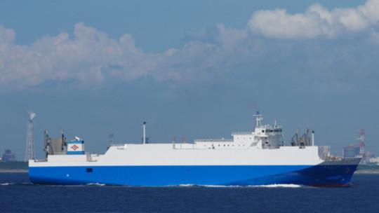 146m RORO Cargo Ship 2006 - Japan Built - 250 Cars 100 Truck -DWT 4986 For Sale